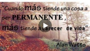 sorprendente-discurso-alan-watts-sobre-la-vida-aceptar-muerte