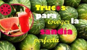 trucos-para-escoger-la-sandia-perfecta1 - Copy