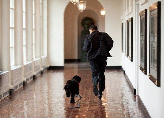 obama_cool_5