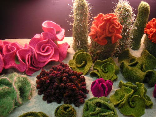 cactus-crochet-3