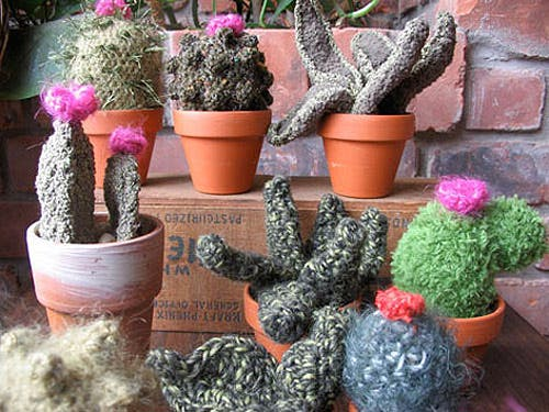 cactus-crochet-7