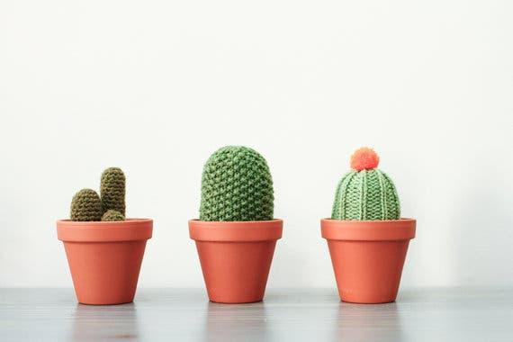 cactus-crochet-9