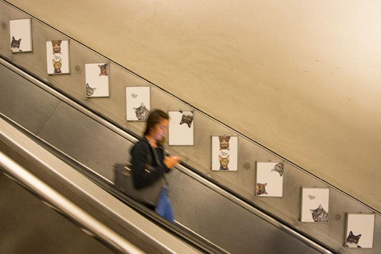gatos_en_subterraneo_londres8