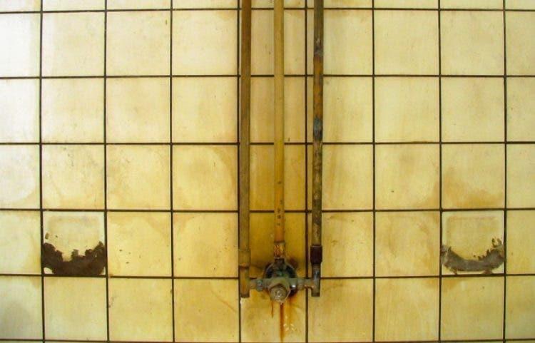 limpia-duchas-1