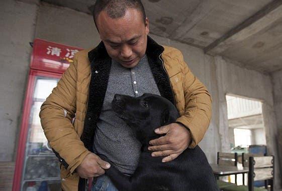 millonario-rescata-mil-perros-3