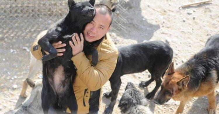 millonario-rescata-mil-perros-5