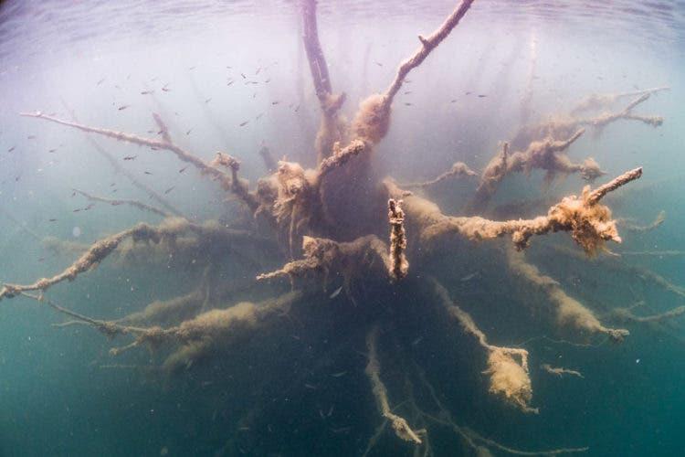 prision-submarina-14