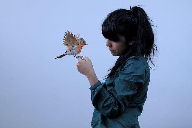esculturas-aves-papel-1