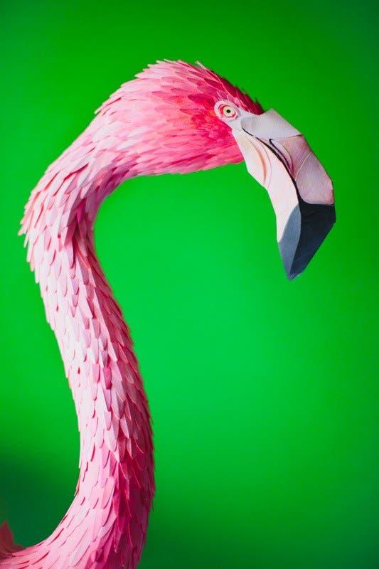esculturas-aves-papel-6