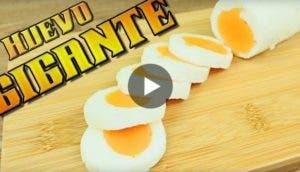 huevo-gigante