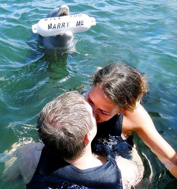 propuestas-de-matrimonio-8