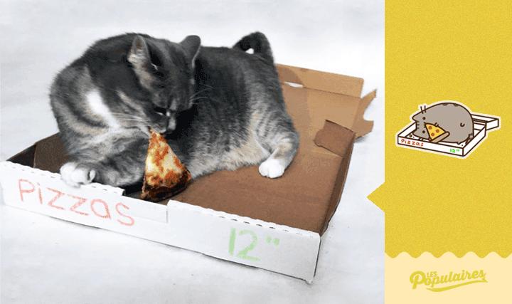 pusheen-cat-real-life10