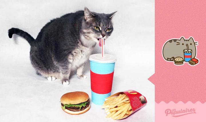 pusheen-cat-real-life11