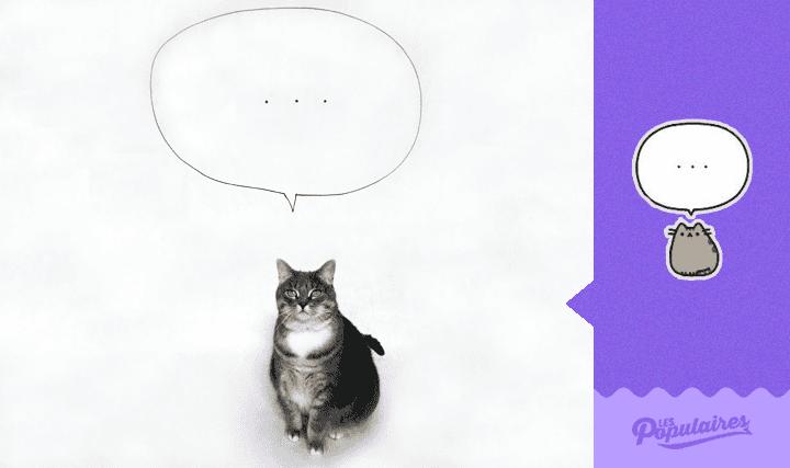 pusheen-cat-real-life12