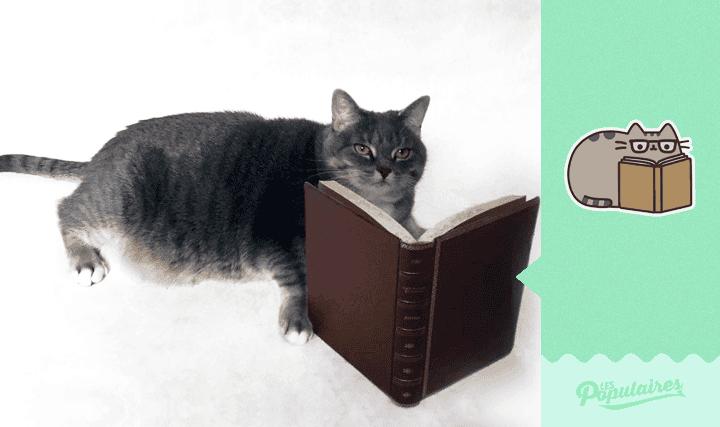 pusheen-cat-real-life4