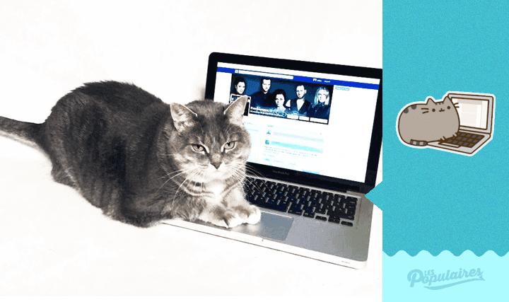 pusheen-cat-real-life6
