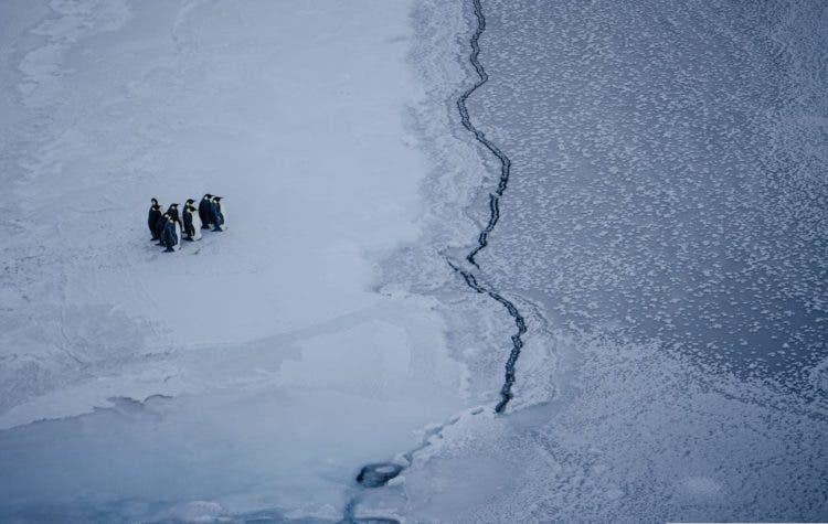 cambio-climatico-greenpeace-14