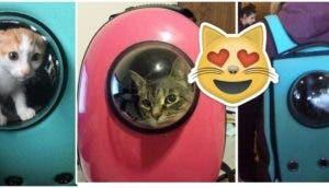 catpacks-mochilas-para-gatos-portada