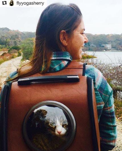 catpacks-mochilas-para-gatos7