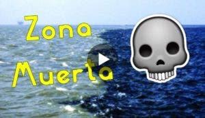 la-verdad-de-zona-muerta-golfo-de-mexicoportada