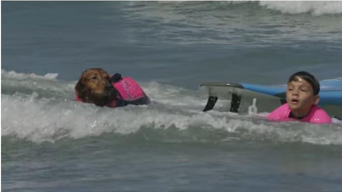 nino-autista-y-perro-surfista-4