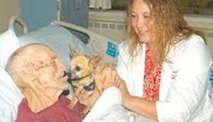 perrito-visita-en-hospital-enfermedad-terminalportada