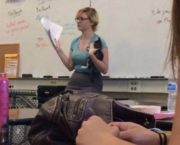 mejor-profesor-del-mundo-07