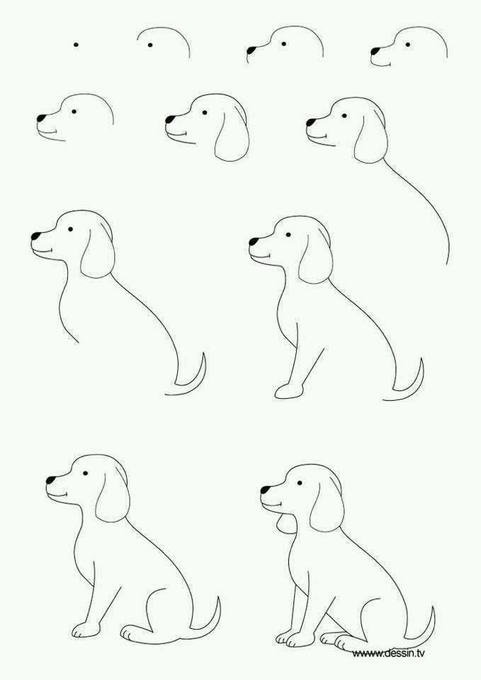 aprender-a-dibujar-1