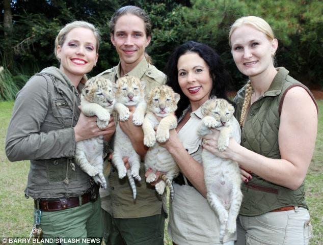 leon-tigre-blanco-bebes-5