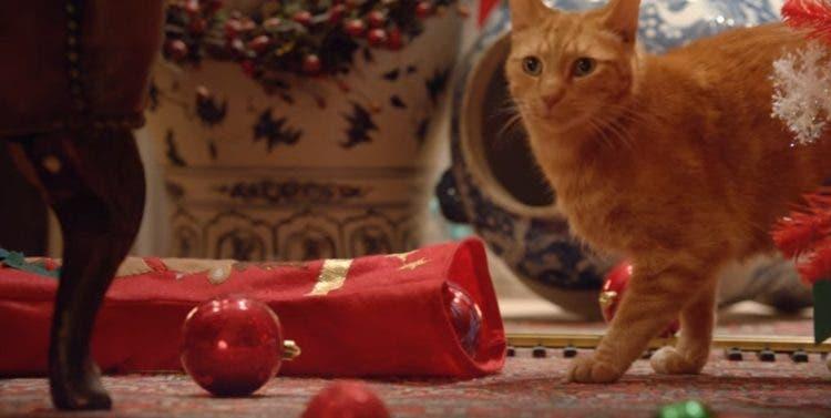 reaccion-de-gatos-navidad2