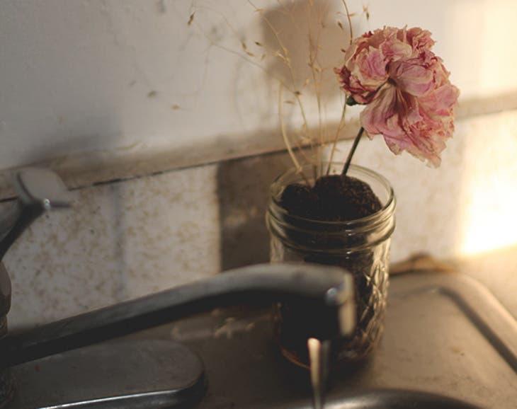 reciclar-granos-de-cafe-8
