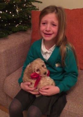 sorpresa-mascota-regalo-navidad-nina