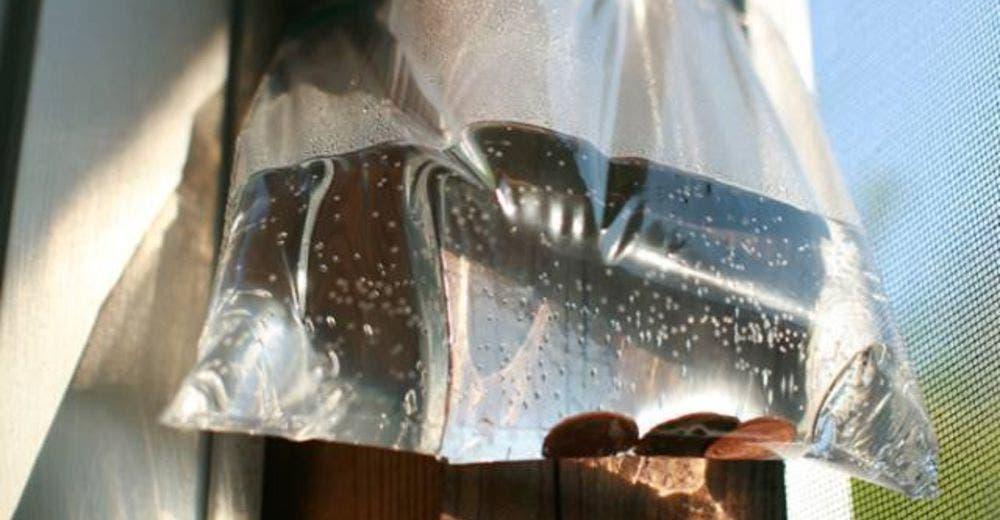Una bolsa con agua y monedas es la solución perfecta a un incómodo problema del hogar