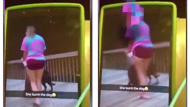 adolescentes chicas incendian fuego encendedor aerosol perro indefenso video snapchat