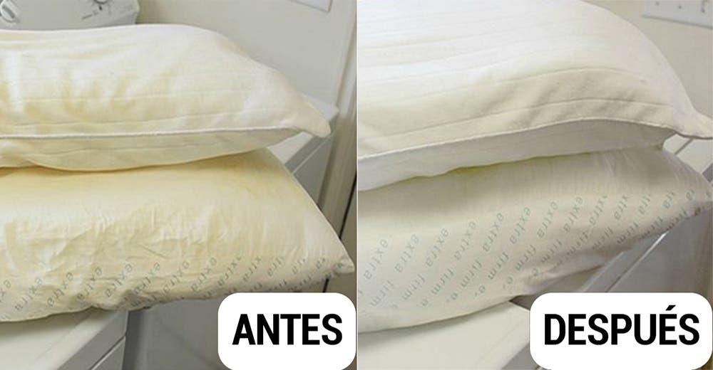 Aprende cómo mantener tus almohadas impecables y libres de ácaros