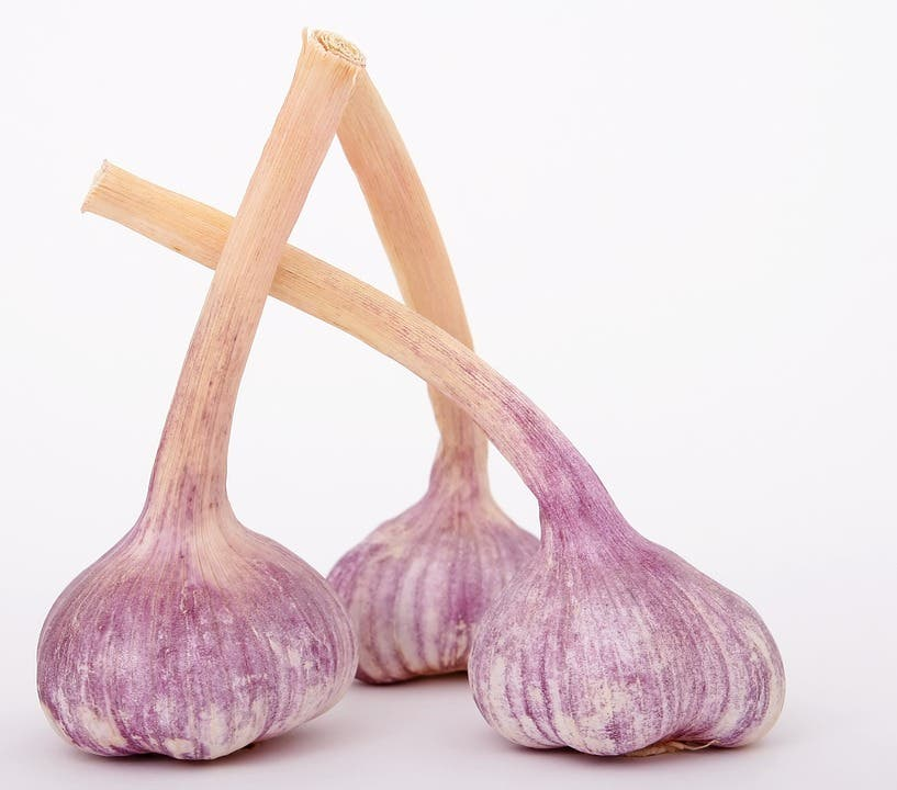 el ajo puede prevenir el cancer y las enfermedades cardiacas segun nuevos descubrimientos garlic superfood prevention disease health