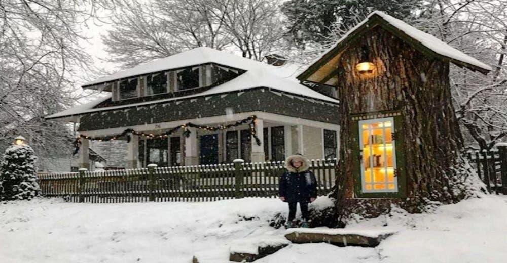 Una mujer poda un árbol ancestral para convertirlo en una encantadora mini biblioteca pública