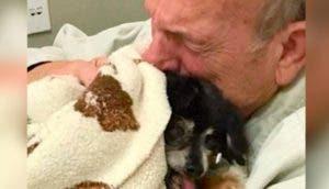 Un abuelito abraza al perro que ha sido su compañero durante 16 años para agradecerle su amor