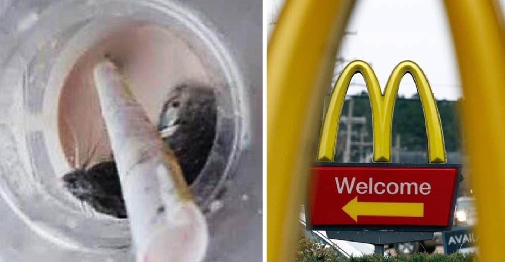 Demanda a McDonald's por 100 mil dólares tras encontrar un ratón vivo en su bebida
