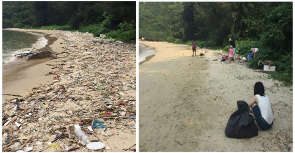 «Trashtag Challenge», el reto viral que está haciendo que la gente limpie el planeta de verdad