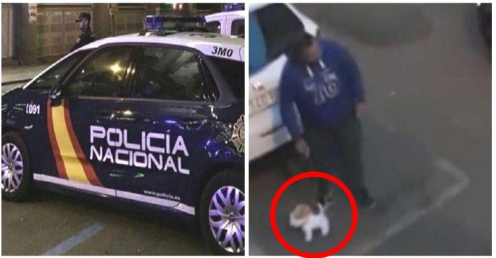 Intentó engañar a la policía paseando a su perro de peluche para romper el confinamiento
