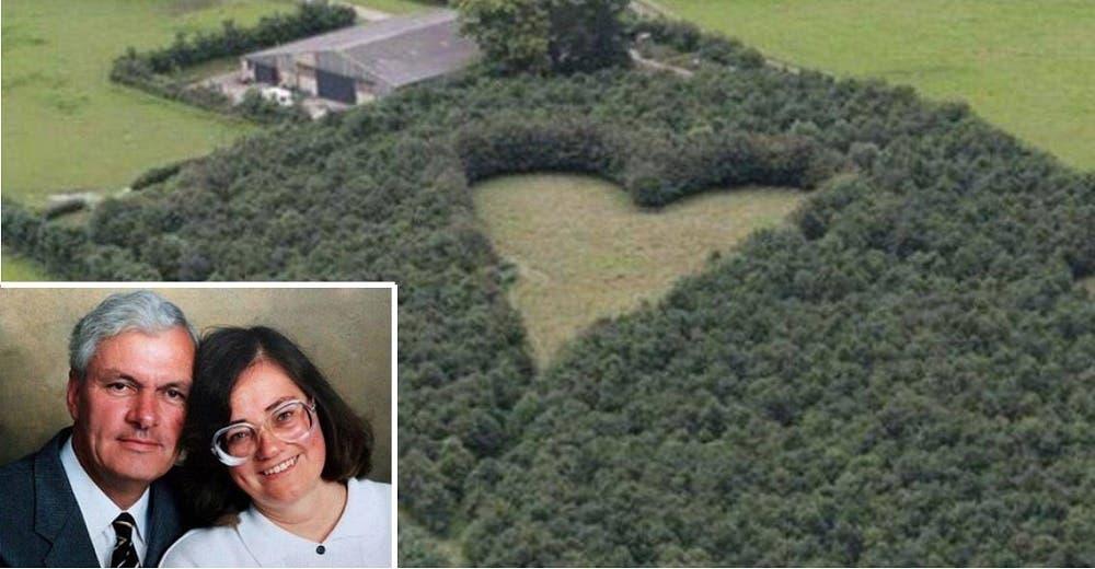 Planta 6 mil árboles en forma de corazón para rendirle homenaje a su esposa fallecida