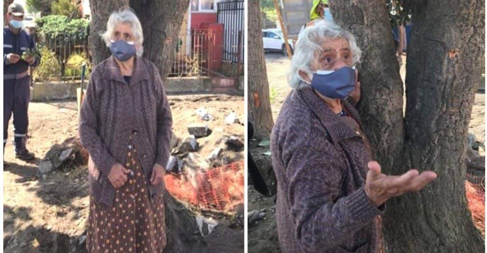 Una abuelita de 80 años se aferra a un árbol en peligro de extinción para evitar que sea talado