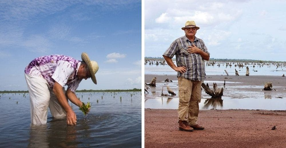Se dedica durante 10 años a reforestar manglares para proteger la biodiversidad